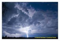 Okavango Delta Lightning Storm
